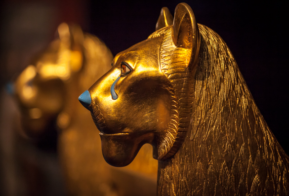 Tutankhamun's Related Keywords & Suggestions - Tutankhamun's Long...