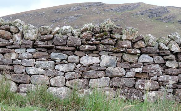 Dry Stone Walls 3