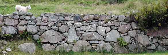 Dry Stone Walls 5