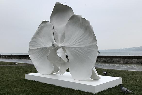 Art Geneve 31
